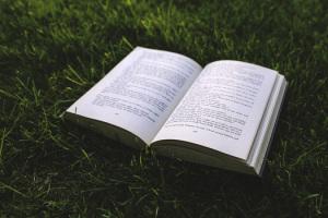 nature-grass-green-book-medium