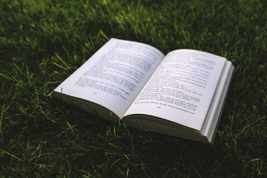 nature-grass-green-book-medium